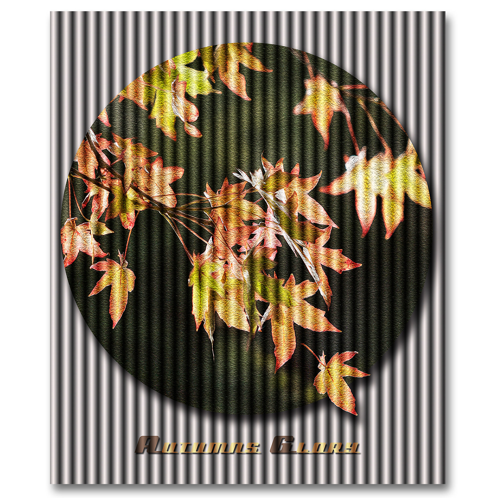 Oaks and Autumn seem to me to be destined to be attractive, art by ian anderson.