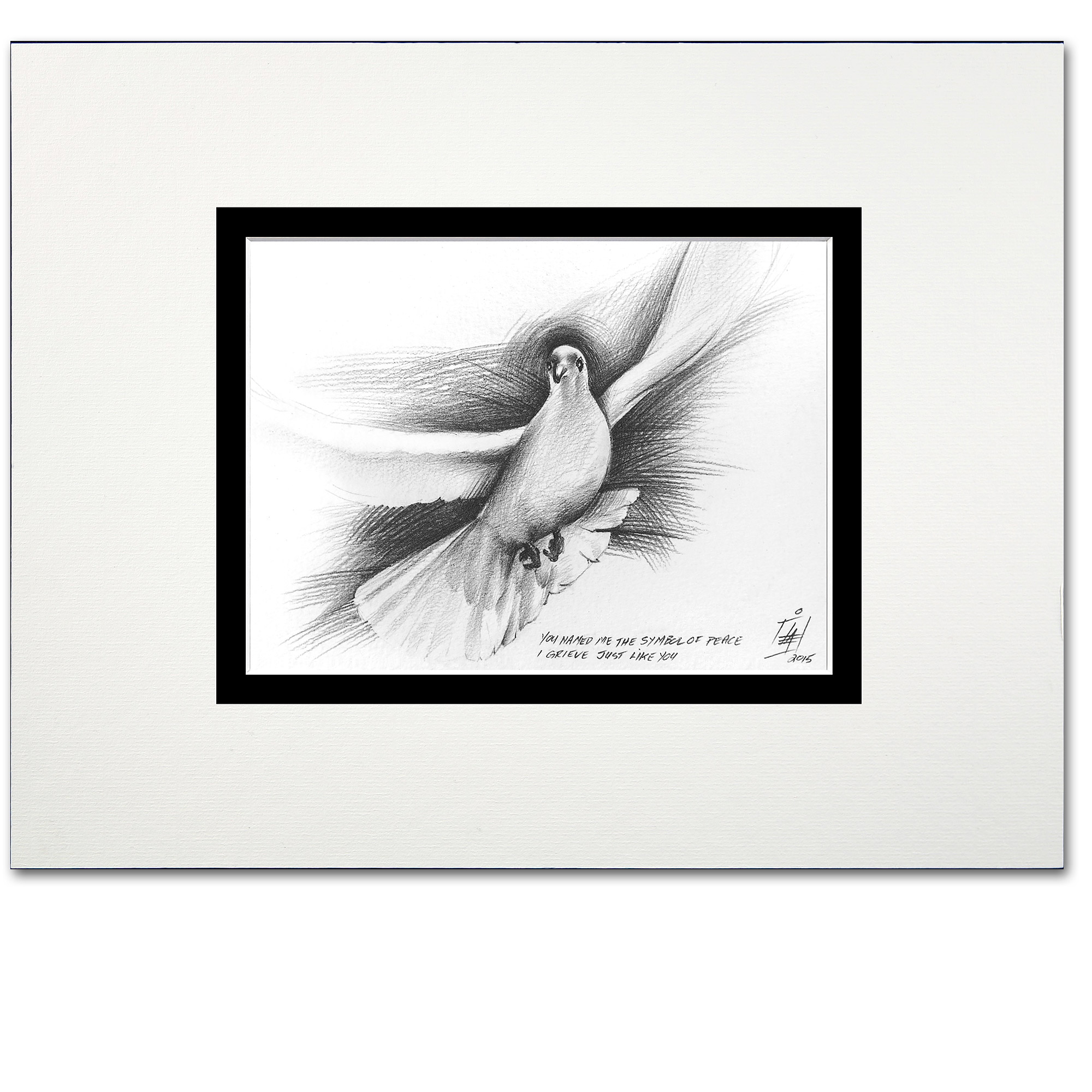 A pencil illustration of a dove in flight, art gallery display.