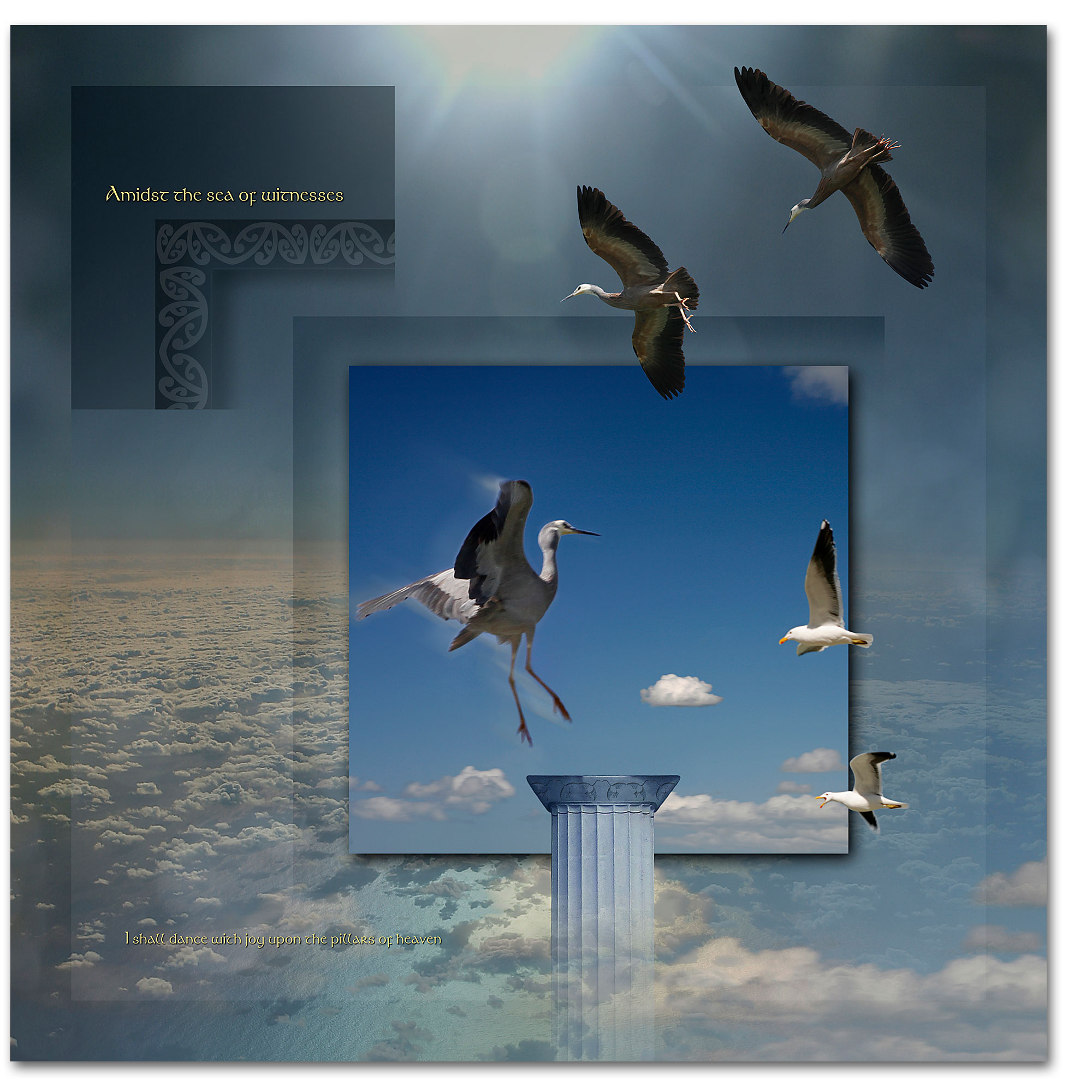 Herons in flight. A surreal story about joy and happiness watching a family grow.