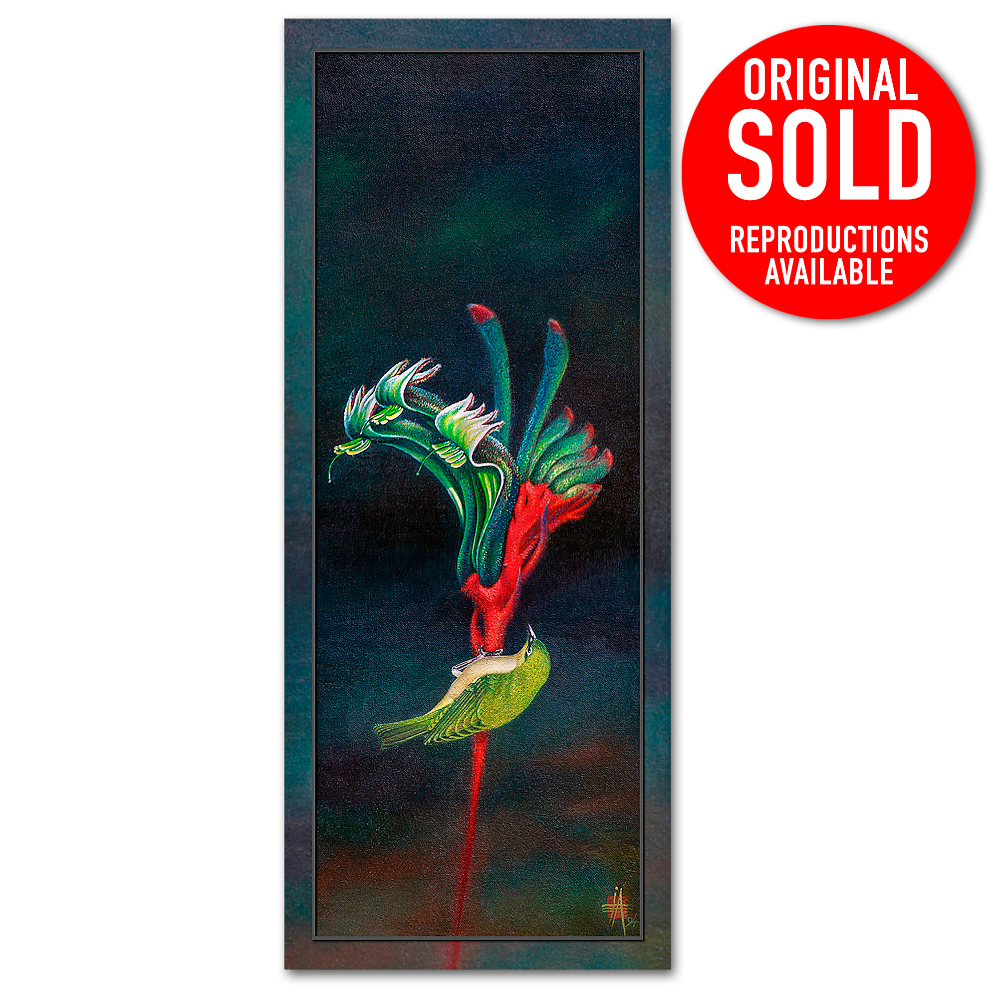 kangaroo paw silvereye painting in oils Flora and Fauna by Ian Anderson Fine Art.