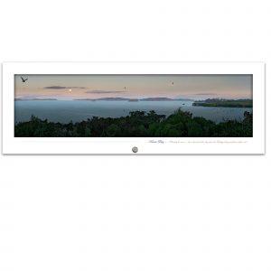 Kawau Bay Matakana Coast - Moonrise and Tui play Photo art.